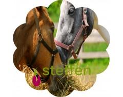 Steffen foin chevaux